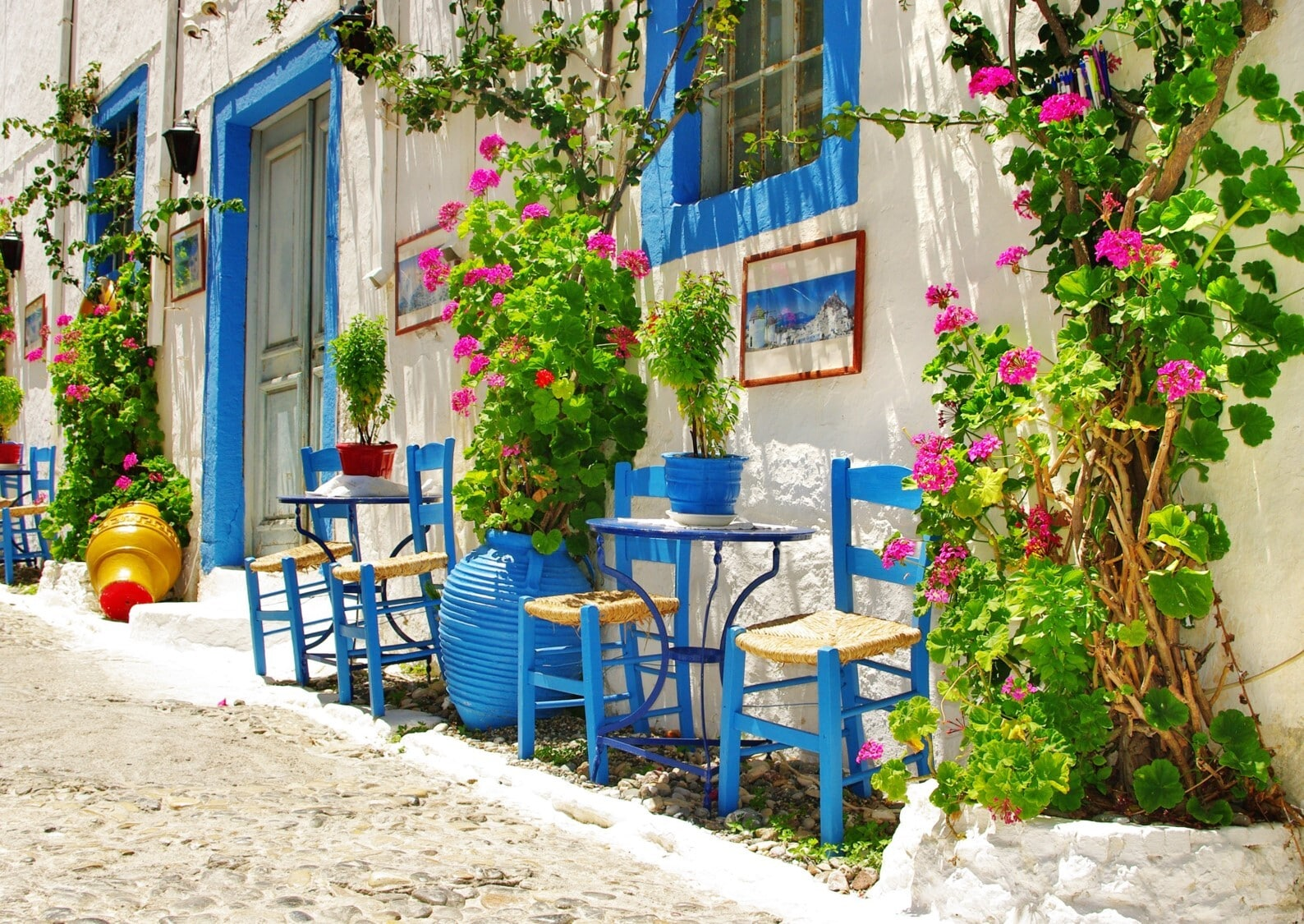 House with blue chairs and flowers